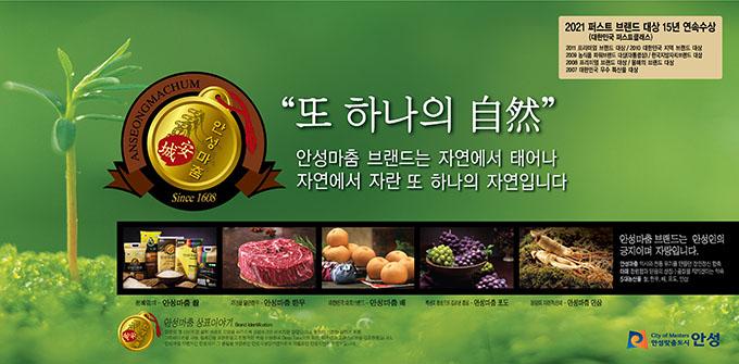 안성마춤 홍보물 2.jpg